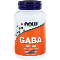 Now Gaba 500 Mg (100ca)