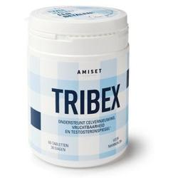 Amiset Tribex 500mg Tabletten 60st